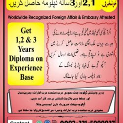 Experience Based Diploma's O3315999937 ,(6)