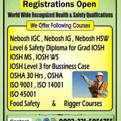 HSE Nebosh IGC HSE Level 6 Safety Diploma for Grade Iosh O3215056755 (1)