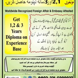 Experience Based Diploma's O3315999937 ,(5)