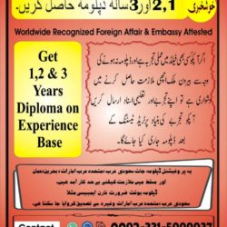 Experience Based Diploma's O3315999937 ,(1)