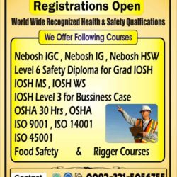 HSE Nebosh IGC HSE Level 6 Safety Diploma for Grade Iosh O3215056755 (5)